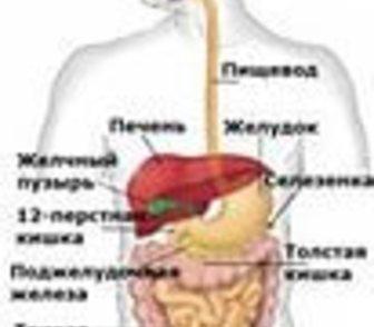 Фото в Красота и здоровье Разное Обследование желудочно-кишечного тракта с в Новосибирске 650