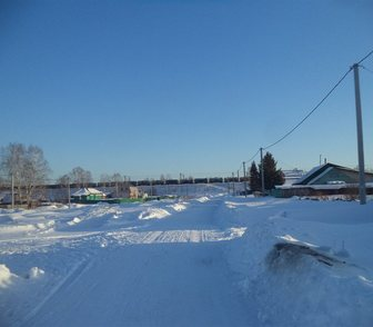 Фото в Домашние животные Другие животные продам крупного , спокойного, рабочего козла. в Новосибирске 10