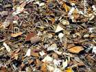 Изображение в   Покупаем металлолом и лом всех видов в любом в Одессе 0
