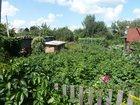 Скачать бесплатно фотографию  Продам дачу в Осташково 34147234 в Омске