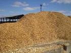 Скачать бесплатно изображение Строительство домов Щепа оптом, древесная щепа 71754982 в Орле
