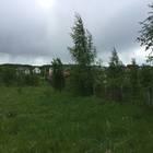 Продам участок вблизи озеро Плещеево