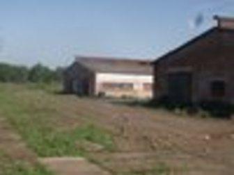 Просмотреть фото Коммерческая недвижимость Животноводческий комплекс в Чернушке 32977031 в Перми
