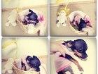 Фотография в Собаки и щенки Продажа собак, щенков Приезжайте смотреть на наших малышек! Очень в Петрозаводске 22000