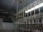 Просмотреть изображение Коммерческая недвижимость Продам Готовый бизнес - цех убоя и переработки птицы 53575296 в Пятигорске