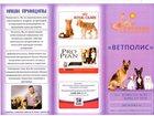 Фотография в Домашние животные Ветеринарные клиники Высокопрофессиональные специалисты  Более в Пушкино 250