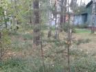 Смотреть фотографию Загородные дома Срочно продам в Старо дачном месте пос, Мамонтовка, участок с лесными деревьями 38453522 в Пушкино
