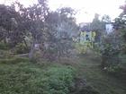 Увидеть foto Земельные участки Продаю участок в Пушкинском районе 39293674 в Пушкино