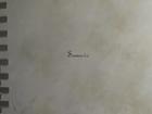 Скачать бесплатно изображение Ремонт, отделка Авторские декоративные покрытия 68044712 в Рязани