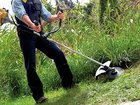 Скачать фото  Покос травы на больших территориях 32869592 в Ростове-на-Дону