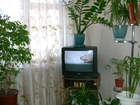 Фотография в Недвижимость Комнаты Продаю в центре города комнату в общежитии в Ростове-на-Дону 1000000