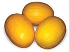 Новое фотографию Разное Семена дыни АГАСИ F1 фирмы Китано 36626721 в Ростове-на-Дону