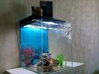 Фото в   Породам аквариум на 48-50 литров + все что в Ростове-на-Дону 0