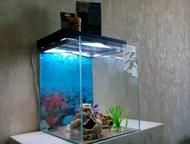Продам аквариум Продам аквариум на 48-50 литров + все что покупалось к нему ( по