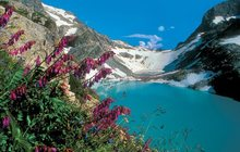 Экскурсионный тур по Северному Кавказу на 8 марта
