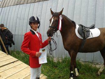 Увидеть фото Другие животные продам спортивную лошадь 33138898 в Ростове-на-Дону