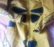 Фото в   Продаю кожаный мотокомбинезон. Состояние в Ростове-на-Дону 10000