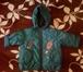 Foto в   Продаю жилет (рост 110-116)одевали несколько в Ростове-на-Дону 6000