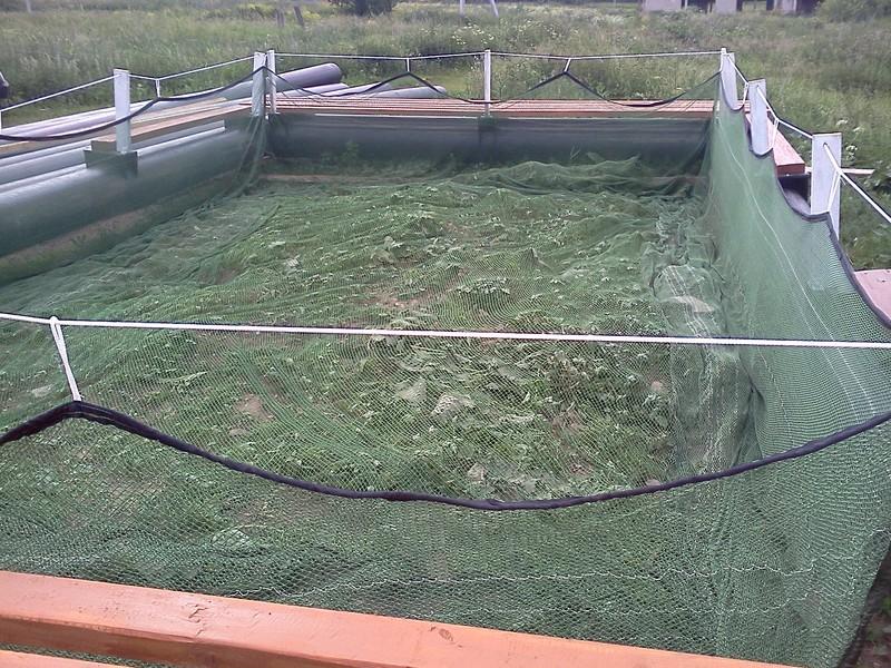 Выращивание рыбы в садках 346