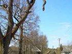 Уникальное изображение  Валка, спилка, спилить дерево любой сложности 33286032 в Санкт-Петербурге