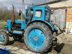 Скачать фото Трактор Срочно продаю Трактор Т-40 1995 г, в, 50 л, с, 33417875 в Луге