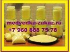 Фотография в Красота и здоровье Товары для здоровья Продам пыльцу сосны. Большой помощник в выздоровлении в Санкт-Петербурге 1400