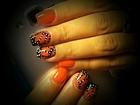 Новое фотографию Салоны красоты Наращивание ногтей 34793381 в Санкт-Петербурге
