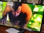 Фото в Бытовая техника и электроника Телевизоры Куплю неисправный, ж/к или плазменный телевизор в Санкт-Петербурге 0
