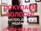 Продать волосы в Санкт-Петербурге, Дорого