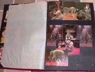продам альбом календариков с 1981 г продам альбом календариков с 1981 года. живо