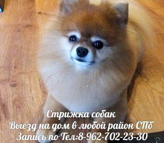 ���������� � ������ � ����� ������� ����� ������� �����   � ��������� ������� ������ � �����-���������� 1�200
