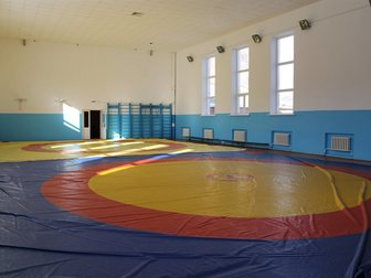 Скачать foto Разное Борцовский зал 34127676 в Саранске