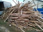 Просмотреть фотографию Разное обрезки сосновые на дрова 70461227 в Саратове