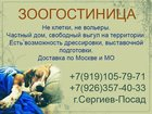 Смотреть foto  Зоогостиница, передержка собак на любой срок 32370419 в Сергиев Посаде