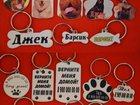 Скачать фото  Адресник для животных 32426386 в Шахты
