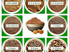 Смотреть изображение Импортозамещение Скорлупа грецкого ореха измельченная, дробленая walnut shell 69332184 в Шахты