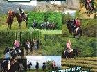 Смотреть фотографию Товары для туризма и отдыха Конные прогулки Сочи, Экскурсии верхом на лошадях Сочи, Конный клуб Триумф Сочи 40421268 в Сочи