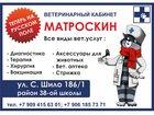 Изображение в Собаки и щенки Лечение собак Все виды ветеринарных услуг: диагностика, в Таганроге 100
