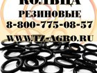 Скачать бесплатно изображение  Кольца резиновые ГОСТ 34241914 в Таганроге