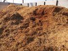 Смотреть фотографию Строительные материалы Навоз, Грунт, Чернозем с доставкой 68342813 в Тамбове