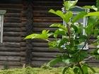 Скачать бесплатно фотографию Загородные дома Продам дом и земельный участок 41838335 в Тюмени