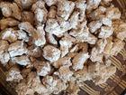 Скачать бесплатно foto Рекламные агентства Отличный корм для собак,без крахмала и аллергенов, 69186481 в Тобольске
