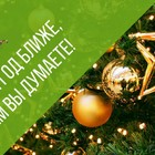 Новогодние корпоративы в Томске 2020