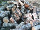 Изображение в Строительство и ремонт Другие строительные услуги дрова с доставкой береза , дуб; можно под в Туле 1600