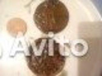 Новое фотографию Коллекционирование монеты в коллекцию 35458536 в Уфе