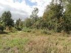 Скачать фотографию Земельные участки Земельный участок под застройку в тихой деревне недалеко от речки, 230 км от МКАД 41276622 в Угличе