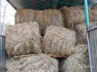 Изображение в Домашние животные Корм для животных Продаю сено в рулонах. Разнотравье. Не прелое. в Улан-Удэ 1800