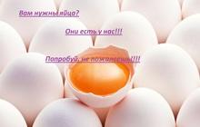 Продаю куриное домашнее яйцо