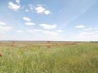 Смотреть фотографию Земельные участки Участок земли 39623101 в Ульяновске