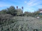 Скачать фотографию Земельные участки Участок земли под дачу или строительство 58243779 в Ульяновске